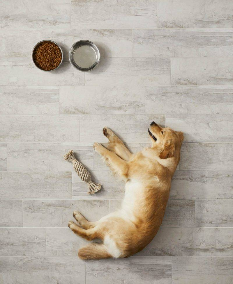 Floor tile that is perfect for pets
