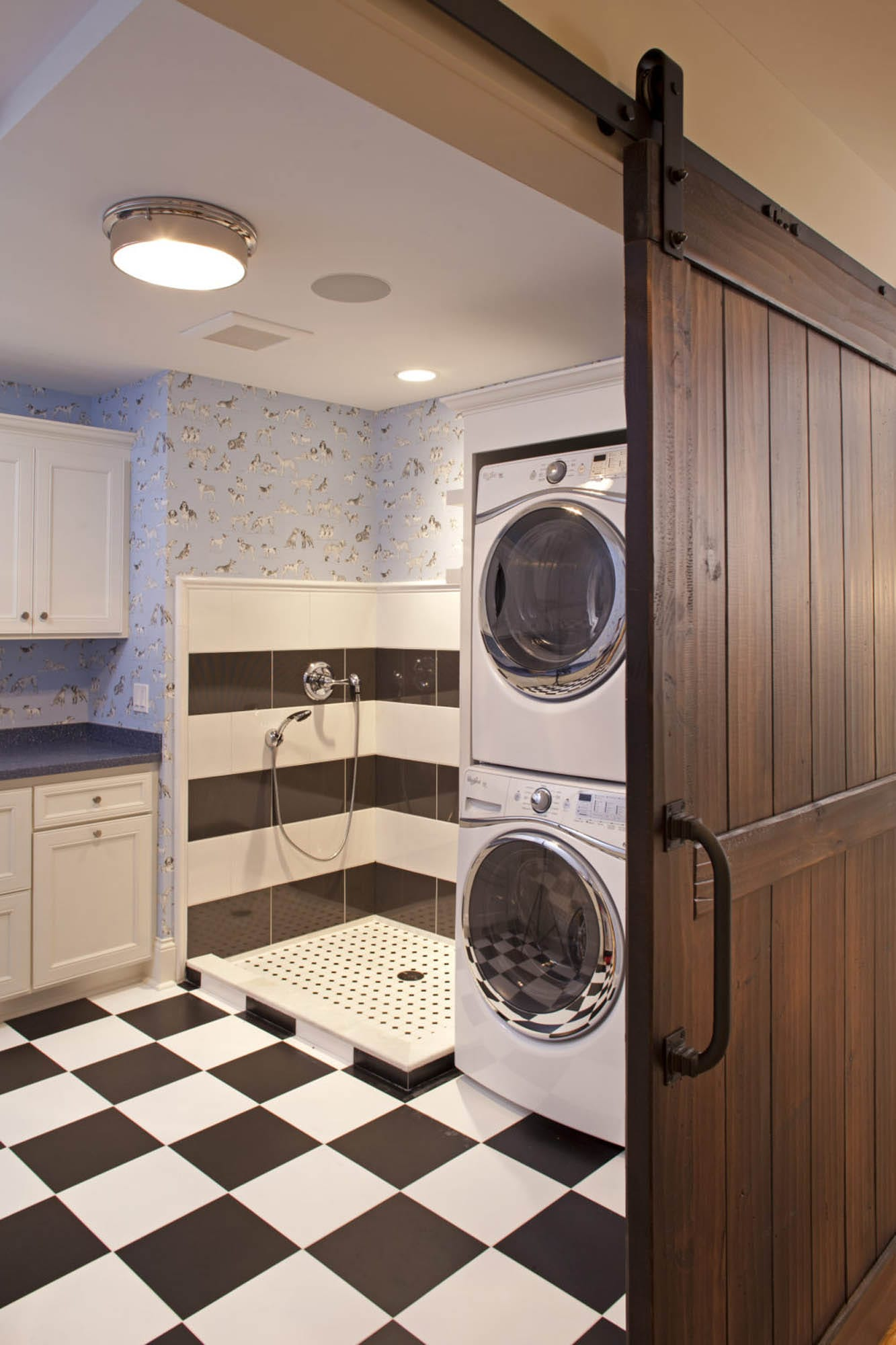 Graphic black and white laundry room